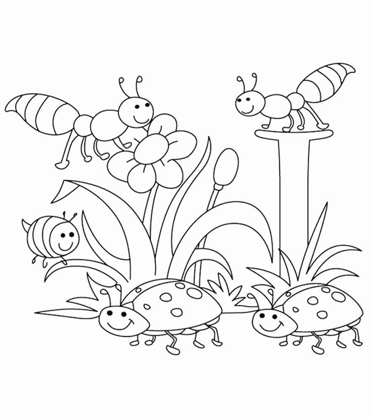 Spring Coloring Pages Free Printable in 2020 Preschool