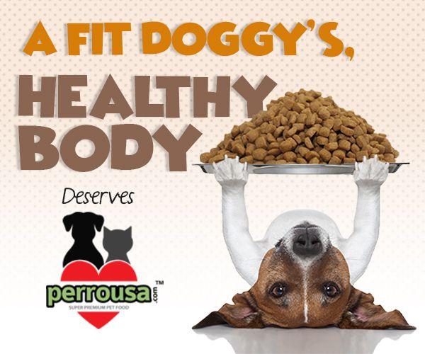 Dog Nutrition Dog Food Recipes Dog Nutrition Raw Dog Food Recipes