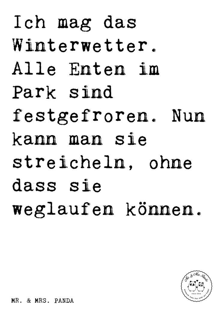 Spruch:   Ich mag das Winterwetter. Alle Enten im Park sind festgefroren. Nun kann man sie streicheln, ohne dass sie weglaufen können. - Sprüche, Zitat, Zitate, Lustig, Weise Winter, Winterwetter, Enten, Spruch, Weihnachten, Schnee, Frost