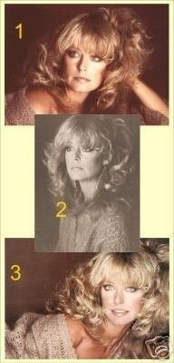 FARRAH FAWCETT 3 PHOTOS 8x10 VERY RARE POSE | #34764667