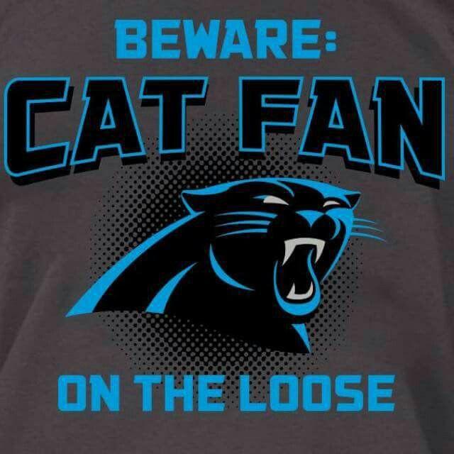 Charlotte Panthers Mascot