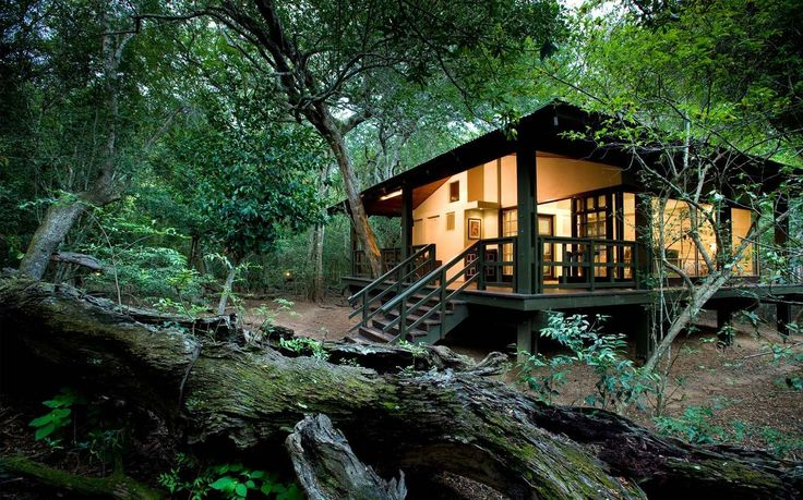 phinda-forest-lodge-11