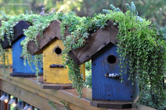 Salón bricolaje azotea pajarera Birdhouse suculenta, techo verde, plantador de la pajarera, Birdhouse de madera, pintado de comedero para pájaros, comedero para pájaros al aire libre