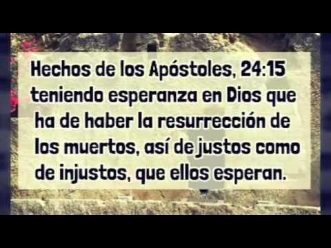 YouTube REFLEXION LA RESURRECCIÓN DE JESUCRISTO, EL ARREPENTIMIENTO  Y  Y EL PERDON DE LOS PECADOS Y AMOR DE DIOS