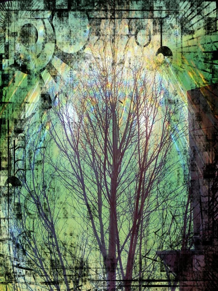 Tree on acid