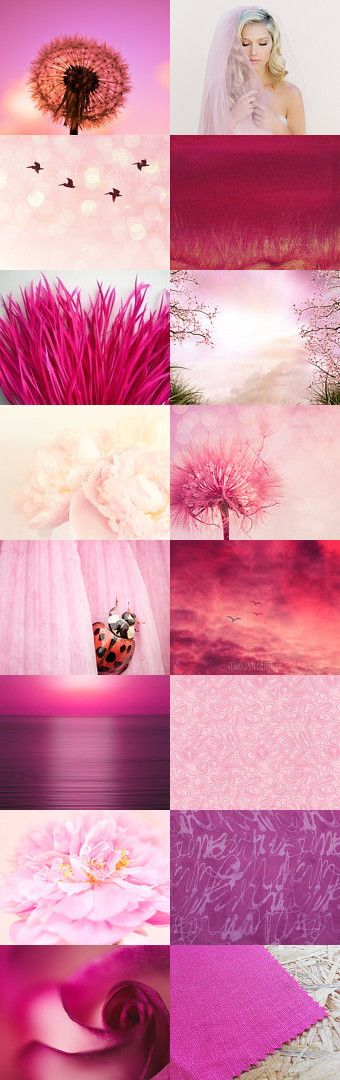Pink Beauties! by Ilona Rudolph on Etsy--Pinned+with+TreasuryPin.com