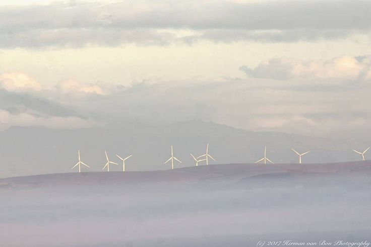 Caledon windmills on an island of mist. Shot at Boskloof. Distance to windmills approx. 30 km. Only in-camera settings. No post-processing needed.  Repost :@hermanvanbon . . . . #hermanvanbon #instapicture #photography #atmosphere #neverstopexploring #aphotographerslife #justgoshoot #exploremore #landscape_lovers #instagood #sunset #landscape #landscapephotography #landscapecaptures  #caledon #boskloof #windmills #windfarm #windfarming #overberg #overbergmagic #visitoverberg #southafrica…