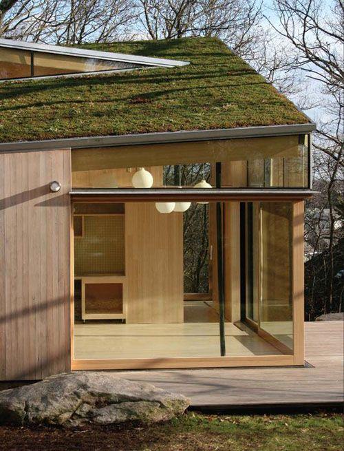 Grass Roof...
