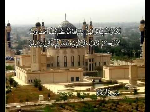 الماني - - Die Kuh (Al Bakara) -  Mohamad Ayub