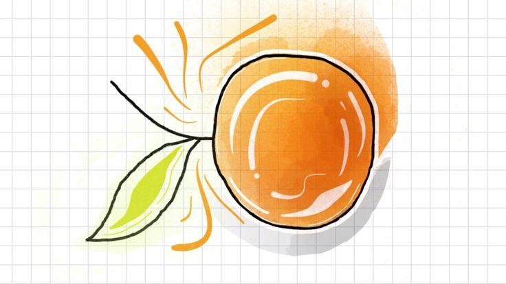 Orange, juicy, sweet, sour, watercolor, tayasui sketches, watercolor idea
