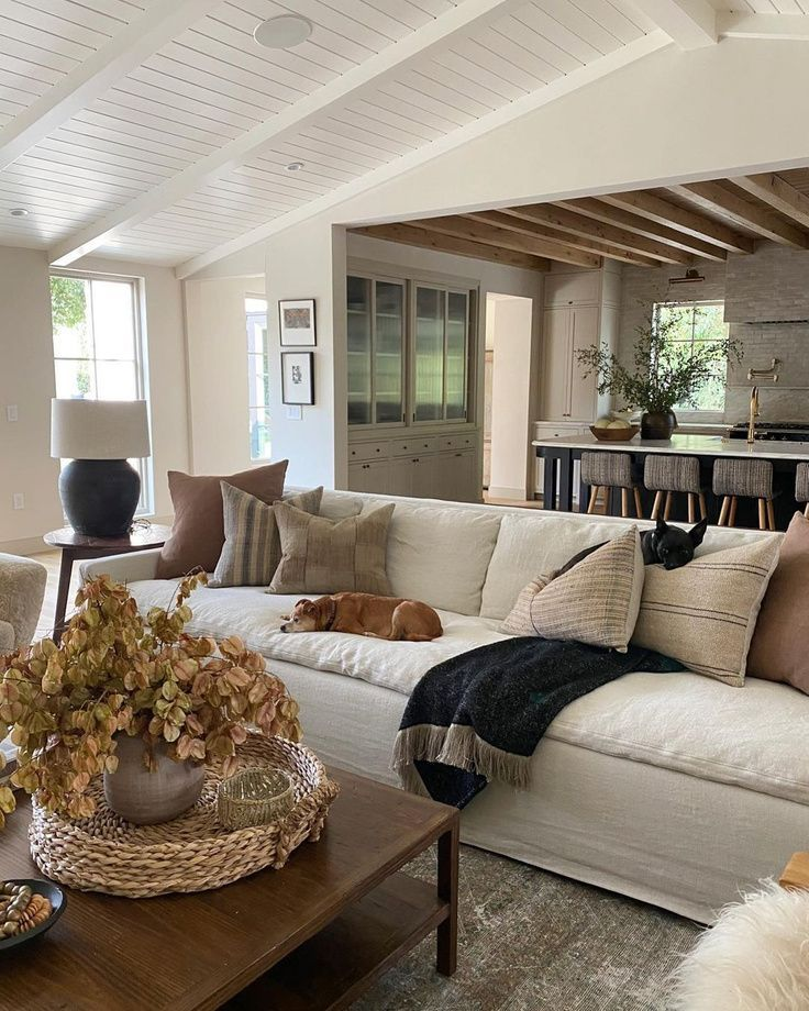 Modern Rustic Living Rooms 25 Stunning Ideas For You Hello Lovely In 2021 Luxe Living Room Rustic Living Room Modern Rustic Living Room