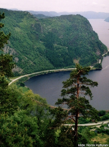 Veien over Tronåsen