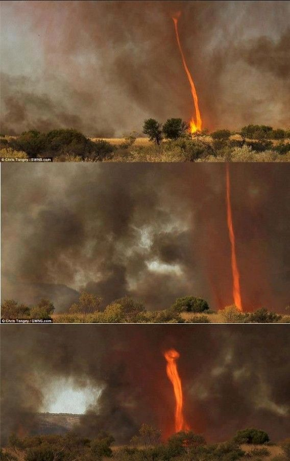 Near Alice Springs, Australia, 30 metre high tornado of FIRE that whirled around Australian outback for terrifying 40 minutes    Fire tornadoes occur when a column of warm, rising air contacts with or creates fire on the ground. An astonished filmmaker is coming to grips with the moment he witnessed one of nature's rarest phenomenons - a tornado comprised entirely of fire- and lived to tell the tale. Chris Tangey had been out in Alice Springs, Australia, scouting locations for a new movie.
