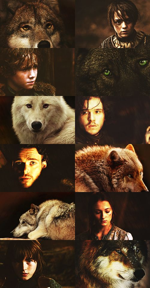 Starks. Nymeria, Arya - Rickon, Shaggy Dog - Ghost, Jon - Robb, Grey Wind - Lady, Sansa - Bran, Summer.