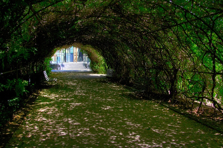 20110206-Botanic Gardens HDR-122.jpg