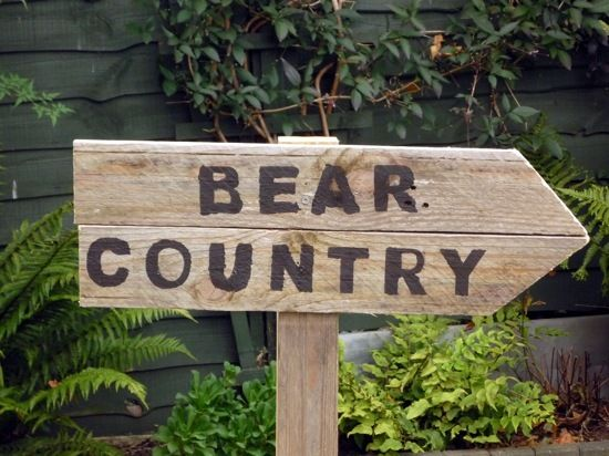 """Photo 6 of 11: We're Going on a Bear Hunt / Birthday """"We're Going on a Bear Hunt party""""   Catch My Party"""