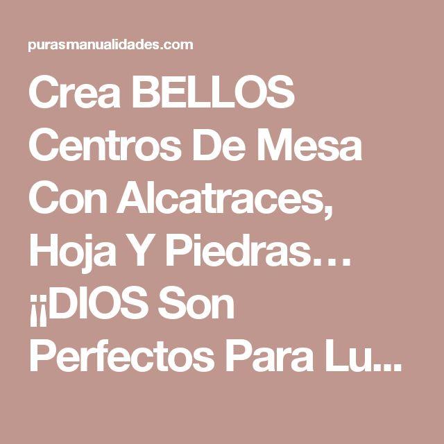 Crea BELLOS Centros De Mesa Con Alcatraces, Hoja Y Piedras… ¡¡DIOS Son Perfectos Para Lucirlos En Mi Casa Y Dejar A Mis Invitados Boca Abierta!