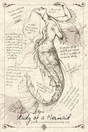 Studie mořské panny od ~ MAReiach Skizzenbuch, výtvarník studii s díky umělce Diana Koehne, skicování lidské postavy, skicování tváře, skicování portrét Nápady zdroje pro studenty umění v milliande.com, umělecké škole portfolia práci tím, že ViolaBlackRaven