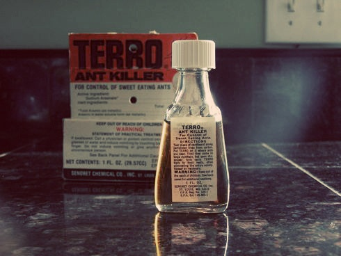 Tried and true. The #1 best selling ant killer in the USA!  #terro #ant killer   www.terro.com