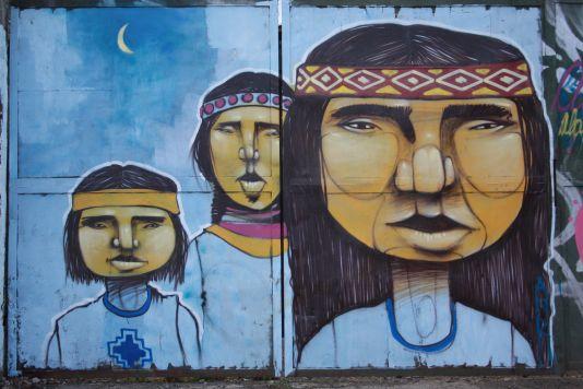 Aner Mapuches Villarrica 2010