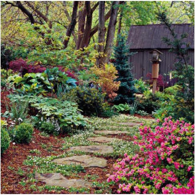 dream garden my Secret garden ideas Pinterest