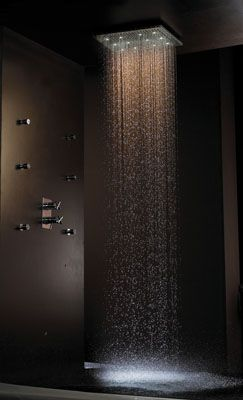 rain shower: Rain Shower, Dreams Houses, Rainfal Shower, Shower Head, Waterf Shower, Waterfalls Shower, Showerhead, Master Bathroom, Dreams Shower