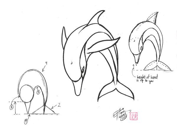 Draw a Dolphin 2 by Diana-Huang.deviantart.com on @deviantART