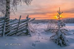 Katso, miten upealta Suomen luonto näyttää eri vuodenaikoina! – 29 kuvaa | Vivas Talvi photo:Asko Kuittinen