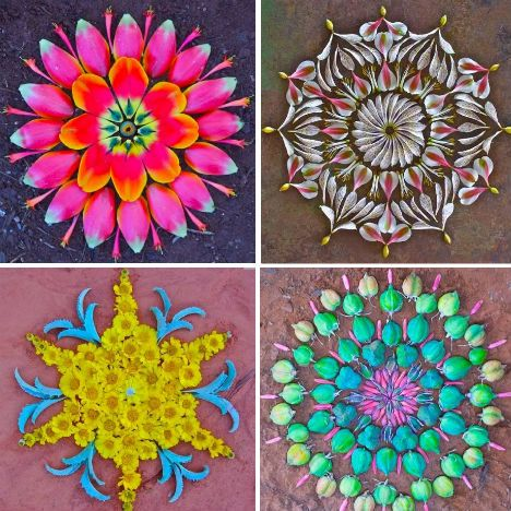 Marvelous Mandalas Made of Flowers and Vegetables - WebEcoist