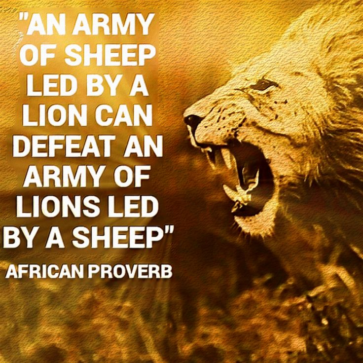 An army of sheep with a lion as its general gives me