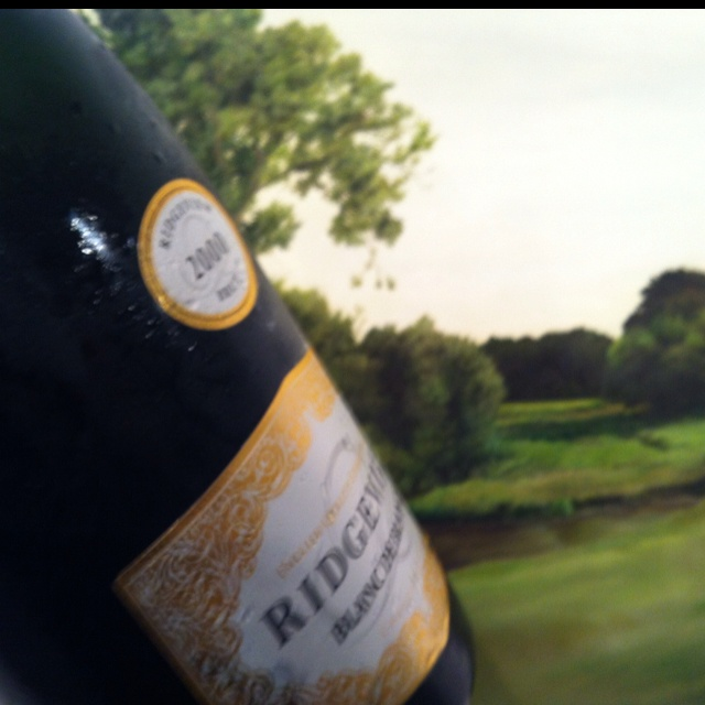 Ridgeview 2000 Blanc de Blancs in Magnum paired w a painting of the English country side.
