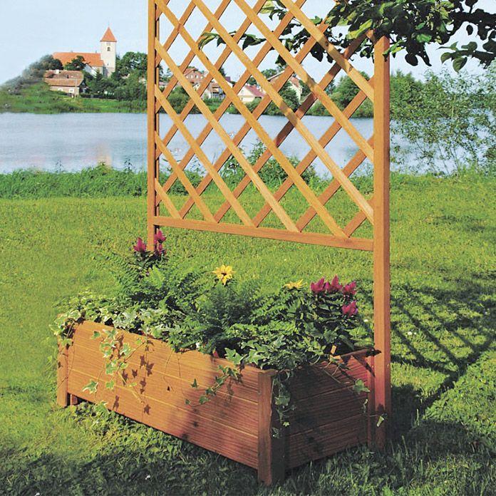 die besten 25 rankgitter mit pflanzkasten ideen auf pinterest terrassentrennwand sichtschutz. Black Bedroom Furniture Sets. Home Design Ideas