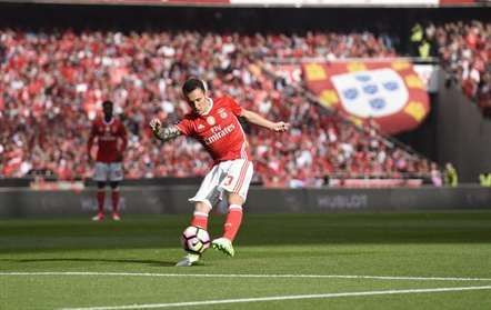 Alex Grimaldo, SL Benfica