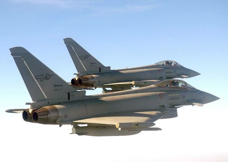 A pair of F-2000 from the 10° Gruppo of the Italian air force.