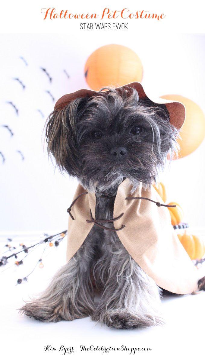 Halloween Pet Costumes | Kim Byers | DIY Ewok Costume ...
