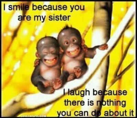my sister funny quotes cute quote family quote family quotes sister quote humor monkeys by Ashleigh1996