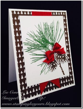 Stampin' Up! ... handmade winter card ... pine branch and cones in natural green and brown put directly onto stamp  ... perfect red bow and popped up fussy cut pinecones for extra dimension ... wood grain embossing on background fishtail banner ... like the wide mat border with designer paper ... wonderful card!