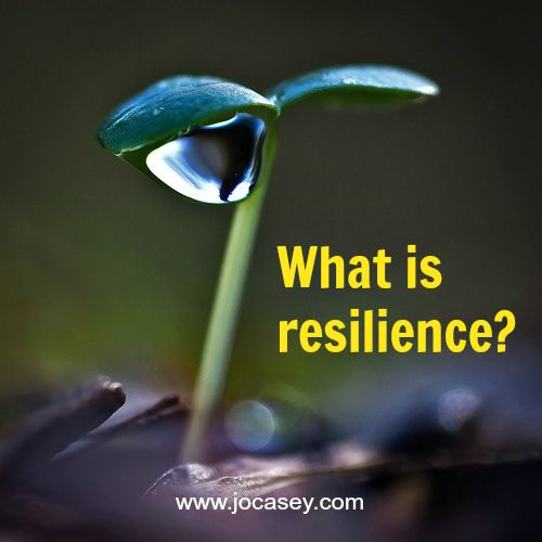 what is resilience - all you ever need to know about developing your own resilience