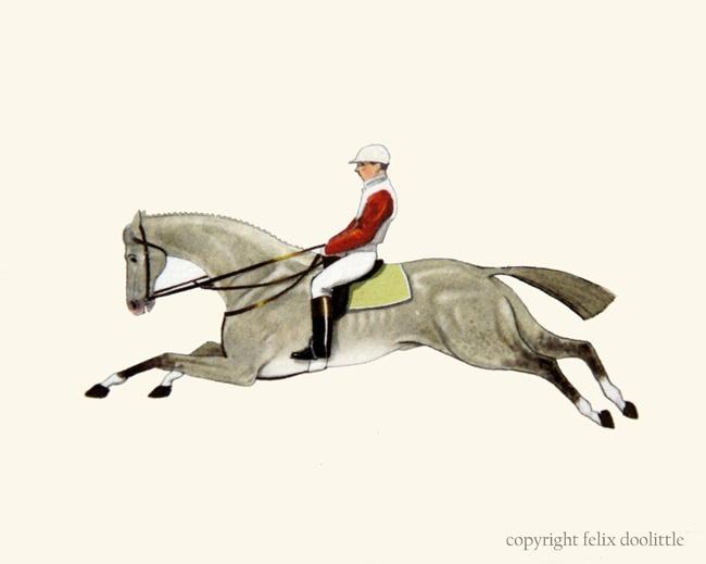 Race horse illustration by Felix Doolittle