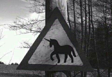 #unicornsagainandagain