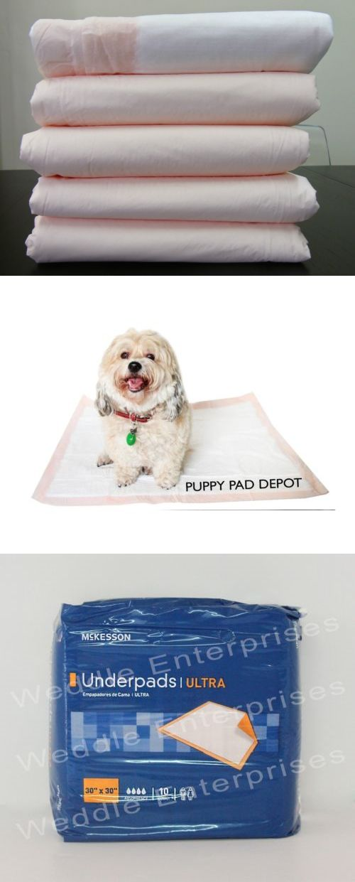 House Training Pads 146243: Mckesson Ultra 200 30X30 Thick Heavy Dog Puppy Training Pee Pads Underpads -> BUY IT NOW ONLY: $74.95 on eBay!