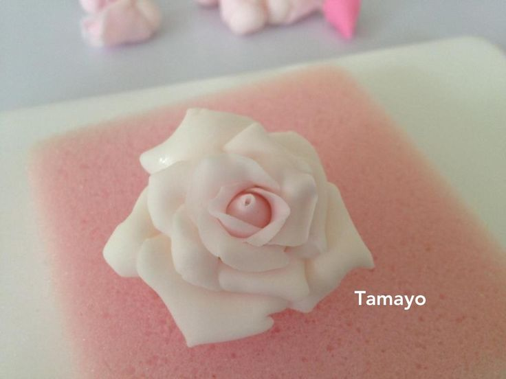 Pict 22  One small fondant rose