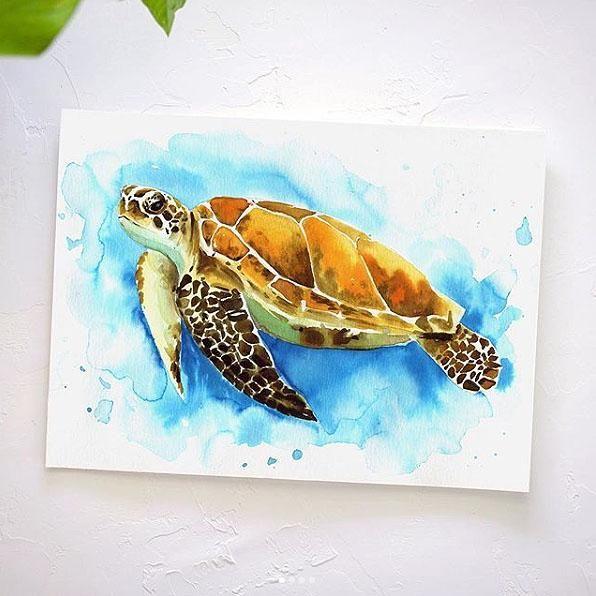 Sea Turtle Watercolor Kit In 2020 Sea Turtle Painting Let S