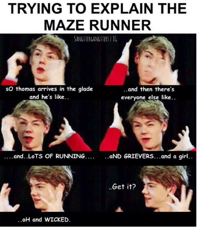 Thomas Brodie-Sangster's attempt to explain The Maze Runner