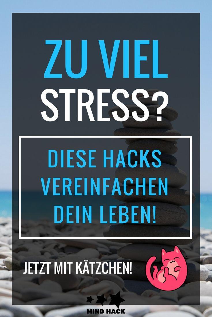 Ein riesen Haufen Hacks um stressfrei durch den ganzen Tag zu kommen! Egal ob MorgenRoutine, Minimalismus, oder auf der Arbeit! Mit Infografik und Kätzchen!