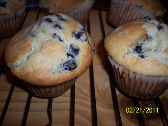 Jumbo Large Top Chocolate Chip Or Blueberry) Muffins Recipe - Food.com