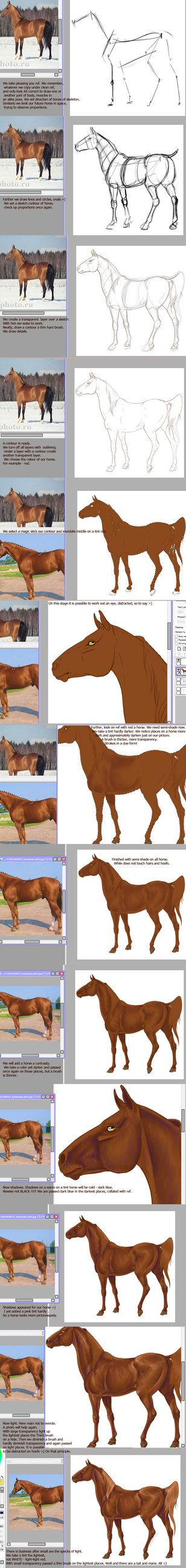 #horse #art on deviantART