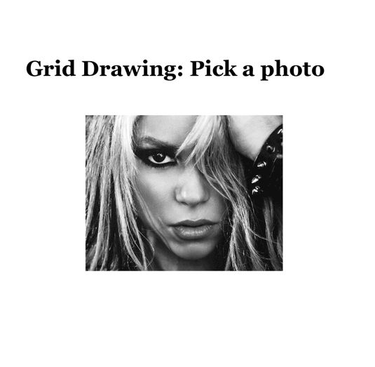 Grid Drawing Instructions- awesome for when I teach this- show powerpoint on this page.