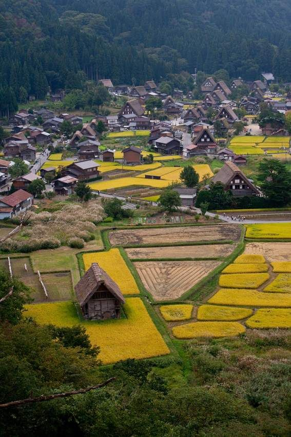 The Historic Villages of Shirakawa-gō and Gokayama are one of Japan's UNESCO World Heritage Sites. The site is located in the Shogawa river valley stretching across the border of Gifu and Toyama Prefectures in central Japan.