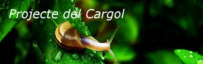 """BUSCANT IDEES: PROJECTE """" ELS CARGOLS"""""""